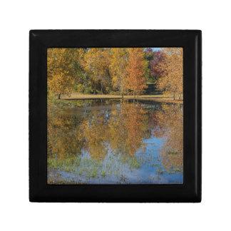 Boîte À Souvenirs Réflexions colorées d'étang d'automne