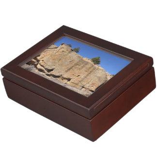 Boîte À Souvenirs Rochers à travers le Nouveau Mexique