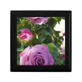 Boîte À Souvenirs Roses vibrants