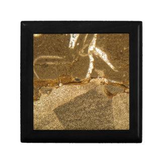 Boîte À Souvenirs Section mince de carbonate triassique sous le