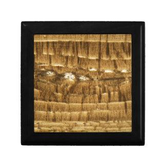 Boîte À Souvenirs Section mince de chaux de Nummulite sous la MICR