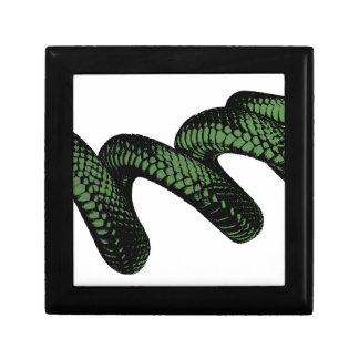 Boîte À Souvenirs Serpent enroulé