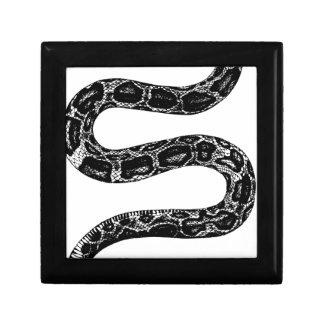 Boîte À Souvenirs Serpent rampant