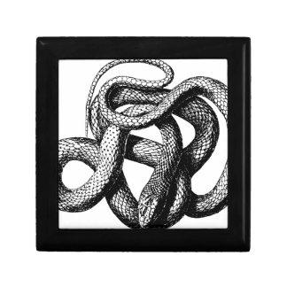 Boîte À Souvenirs Serpent tordu