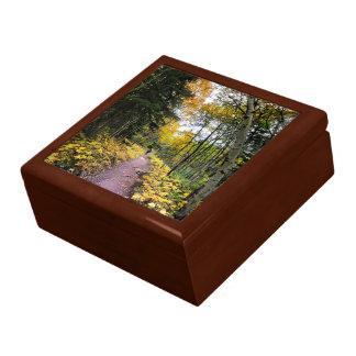 Boîte À Souvenirs Traînée de passage de Swiftcurrent - parc national