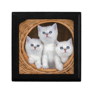 Boîte À Souvenirs Trois chatons blancs en roseau basket.JPG
