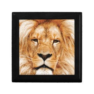 Boîte À Souvenirs visage de lion ouais