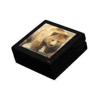 Boîte-cadeau d'ours gris petite boîte à bijoux carrée