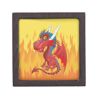 Boîte de flamme de dragon de bébé