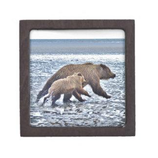 Boîtes À Bijoux De Première Qualité boîte 2x2 de souvenir avec l'ours gris et l'petit
