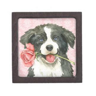 Boîtes À Bijoux De Première Qualité Valentine border collie rose