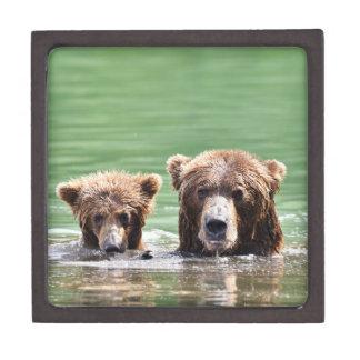 Boîtes À Souvenirs De Première Qualité boîte 3x3 de souvenir avec l'ours gris et l'petit