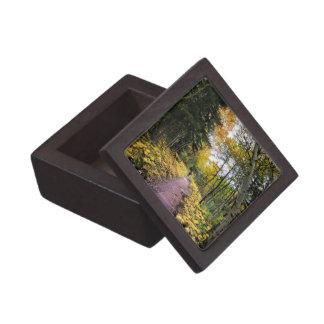 Boîtes À Souvenirs De Première Qualité Traînée de passage de Swiftcurrent - parc national