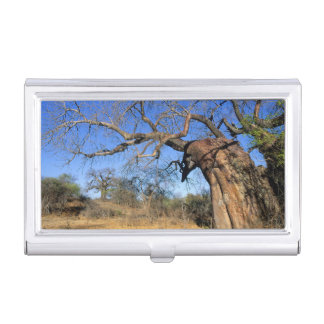 Boîtier Pour Cartes De Visite Baobab (Adansonia Digitata), ressortissant de