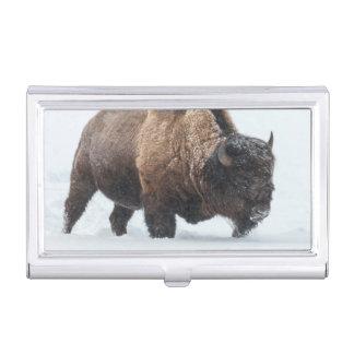 Boîtier Pour Cartes De Visite Bison marchant dans la neige