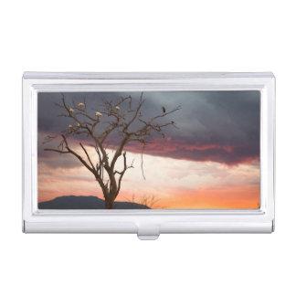 Boîtier Pour Cartes De Visite Coucher du soleil sur le marais de Kandheri avec