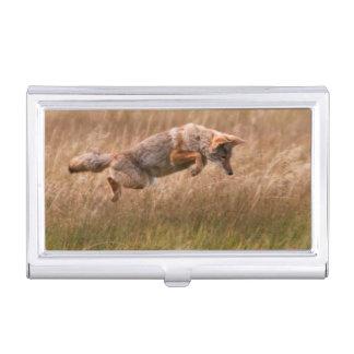 Boîtier Pour Cartes De Visite Coyote sautant - prés de gibbon