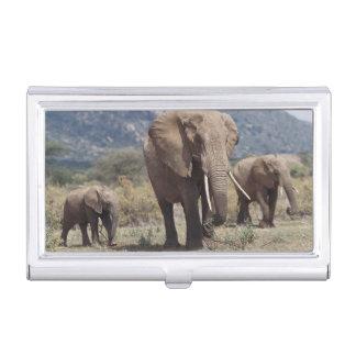 Boîtier Pour Cartes De Visite Éléphant de mère marchant avec le veau d'éléphant