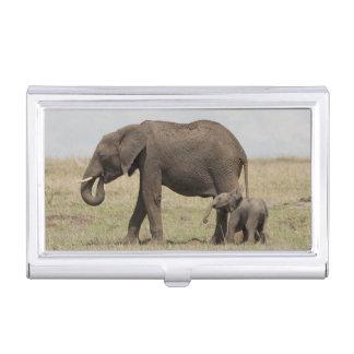 Boîtier Pour Cartes De Visite Mère d'éléphant africain avec la marche de bébé