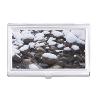 Boîtier Pour Cartes De Visite Neige et roches, parc national de mont Rainier