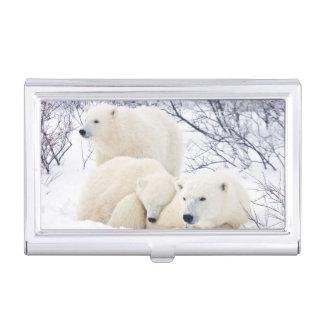 Boîtier Pour Cartes De Visite Ours blancs femelles et deux petits animaux 3