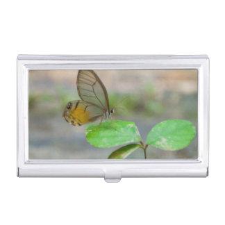 Boîtier Pour Cartes De Visite Papillon sur la feuille, Iquitos, Maynas, Pérou