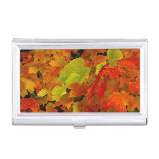 Boîtier Pour Cartes De Visite Parc d'état d'Itasca, couleurs d'automne