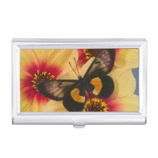 Boîtier Pour Cartes De Visite Photographie de Sammamish Washington du papillon