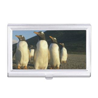 Boîtier Pour Cartes De Visite Pingouins de Gentoo, Pygoscelis Papouasie),