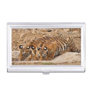 Boîtier Pour Cartes De Visite Réservation de tigre de Tadoba Andheri