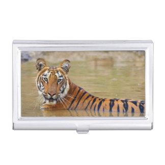 Boîtier Pour Cartes De Visite Tigre de Bengale royal au point d'eau