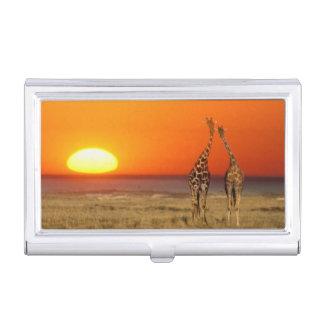 Boîtier Pour Cartes De Visite Un couple de girafe entre dans le coucher du