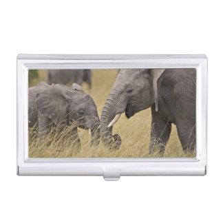 Boîtier Pour Cartes De Visite Un éléphant africain frôlant dans les domaines du