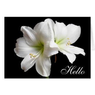 Bonjour carte de voeux de fleur de lis blanc sur
