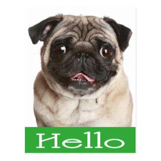 Bonjour carte postale de salutation de chiot de