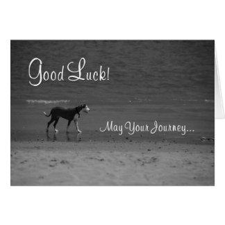 Bonne chance - chien sur la plage carte de vœux