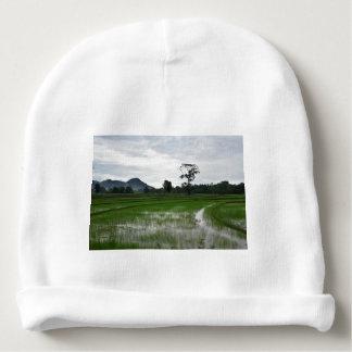Bonnet De Bébé Gisements de riz du Sri Lanka