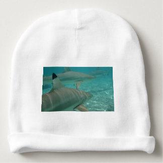 Bonnet De Bébé shark