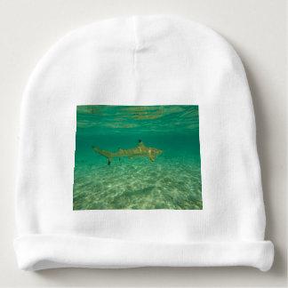 Bonnet De Bébé Shark in bora bora
