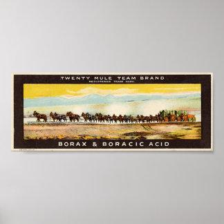 Borax d'équipe de vingt mules posters