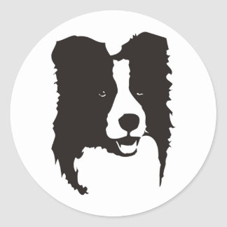 Border collie sticker rond