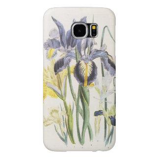 Botanique florale vintage, fleurs d'iris de jardin