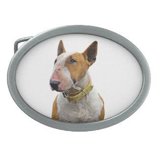 Boucle de ceinture - Design Bull Terrier