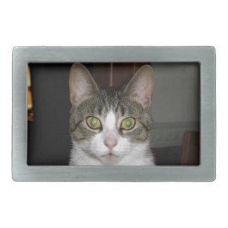 Boucle De Ceinture Rectangulaire Chat tigré avec de grands yeux verts