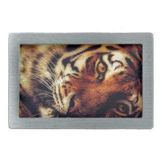 Boucle De Ceinture Rectangulaire Faune animale de tigre reposant le macro plan