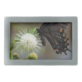 Boucle De Ceinture Rectangulaire fleur de bouton et spicebush3