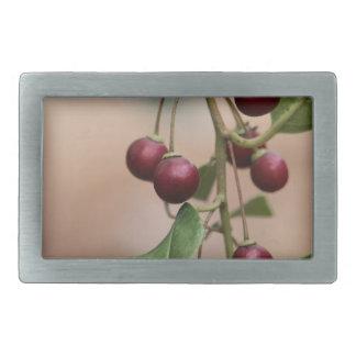 Boucle De Ceinture Rectangulaire Fruits d'un nerprun brillant de feuille