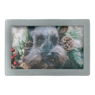 Boucle De Ceinture Rectangulaire Guirlande de vert de Noël d'animal de compagnie de
