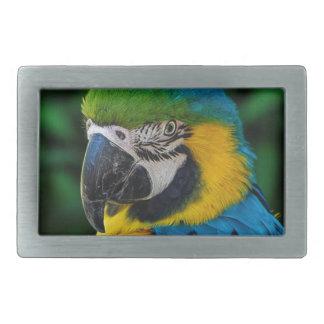 Boucle De Ceinture Rectangulaire Oiseau bleu et jaune