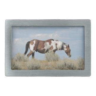 Boucle De Ceinture Rectangulaire Picasso, étalon de lavabo de sable, le Colorado